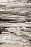 Beach wood log. Texture of wood log on a beach with white sand jammed stock photography