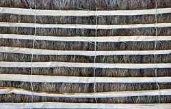 Beach wooden fencing Stock Images