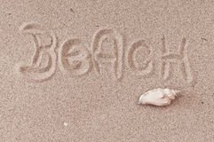 The beach. Beach written on sand decorated with a seashell Stock Photo