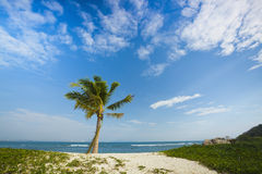 Beach of wuzhizhou island in sanya hainan Stock Images