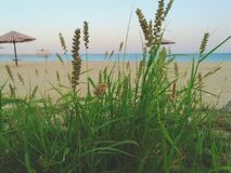 Beach& x27; piękno Zdjęcia Stock