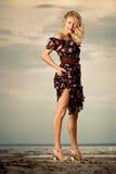 On the beach. Stock Photography