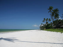 Beach in Zanzibar Royalty Free Stock Photography