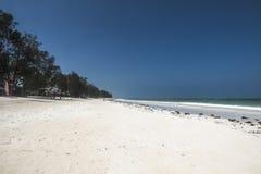Beach in Zanzibar Royalty Free Stock Photography