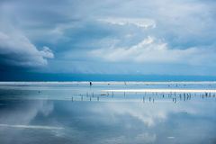 Beach in Zanzibar Island during the rainy season. Beach at low tide right before the storm during the rainy season in Zanzibar Island Royalty Free Stock Images