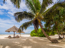 Beach in Zanzibar Royalty Free Stock Photos