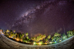 Beach in Zanzibar in night with palm trees, milky way and sky fu Royalty Free Stock Photography