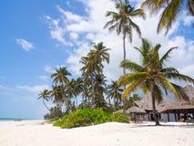 Beach in Zanzibar Stock Photos