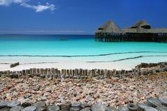 Beach in Zanzibar. Paradise sandy beach in Zanzibar, africa Stock Image