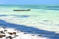 Beach   in zanzibar seaweed    ocean tanzania Stock Photos