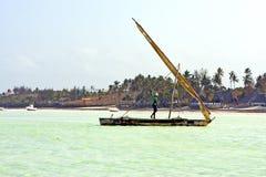 beach   in zanzibar seaweed  palm     sand isle  sky  and sailin Royalty Free Stock Photography