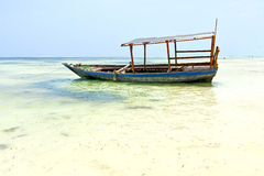 Beach   in zanzibar seaweed       sand isle  sky    sailing Stock Photo