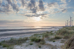 Beach, Zeeland royalty free stock photos