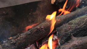 BeaCharred wood in the fire stock footage