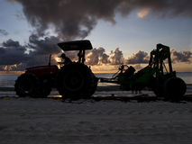 Beachcomber no nascer do sol Imagem de Stock