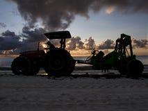 Beachcomber at sunrise Stock Image