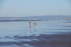 Beachcombers explore the sandy beach Stock Images