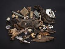 Beachcombing, encontrou objetos incluir as garrafas velhas, rejeitadas pescando a atração e objetos naturais bonitos imagens de stock royalty free