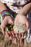 Beachcombing fa tesoro - il dollaro di sabbia, le coperture & il vetro della spiaggia immagine stock libera da diritti