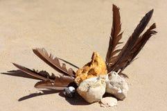 Beachcombing treasure Stock Image