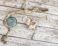 Beachcombing treasures Stock Image