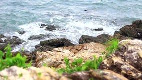 Beache e le onde stanno spostando alla riva stock footage