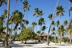 Beache, Repubblica dominicana Immagine Stock