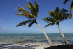 Beache, Repubblica dominicana Immagine Stock Libera da Diritti