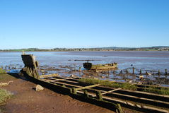 Beached boat. Old rotting rowing boat at low tide at Exmouth Bay Royalty Free Stock Images