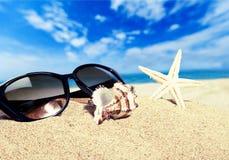 Beaches. Sand sun surf life scene sunlight royalty free stock images
