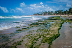 Beaches of Brazil - Porto de Galinhas. The beach of Porto de Galinhas is one of the most famous of Brazil. It is located in Ipojuca, near Recife, the state royalty free stock photo