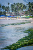 Beaches of Brazil - Porto de Galinhas. The beach of Porto de Galinhas is one of the most famous of Brazil. It is located in Ipojuca, near Recife, the state royalty free stock photos