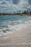 Beaches of Brazil - Serrambi, Pernambuco. Serrambi is a beach in the state of Pernambuco in northeastern Brazil. It is close to the beaches of Port de Galinhas royalty free stock photo