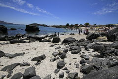 Beaches and harbour near Bahia Inglesia, Caldera, Chile royalty free stock image