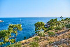 Beaches of Hvar, Croatia. Turquoise waters, green pine trees and rocks royalty free stock image