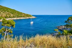 Beaches of Hvar, Croatia. Turquoise waters, green pine trees and rocks royalty free stock photo