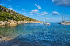Beaches of Hvar, Croatia. Turquoise waters, green pine trees and rocks royalty free stock photography