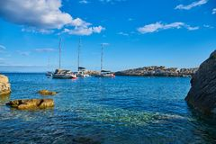 Beaches of Hvar, Croatia. Turquoise waters, green pine trees and rocks royalty free stock images