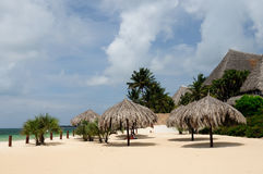 Beaches in Kenya in Africa. Kenya, Beautiful beach resort in the  Malindi Royalty Free Stock Images