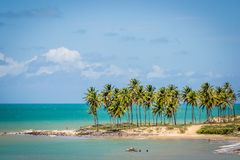 Free Beaches Of Brazil - Maracajau RN Royalty Free Stock Photos - 109785108