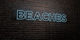 BEACHES -Realistic Neon Sign on Brick Wall background - 3D rendered royalty free stock image. Can be used for online banner ads and direct mailers royalty free illustration