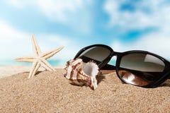 Beaches. Sand sun surf life scene sunlight royalty free stock photos