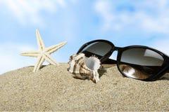 Beaches. Sand sun surf life scene sunlight royalty free stock image