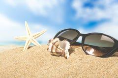 Beaches. Sand sun surf life scene sunlight stock photography