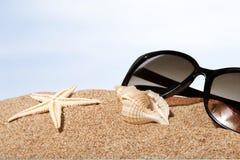 Beaches. Sand sun surf life scene sunlight stock image