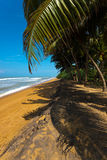 Beaches in Sri Lanka Royalty Free Stock Images