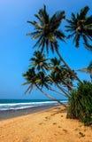 Beaches in Sri Lanka Royalty Free Stock Photography