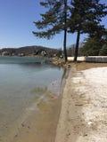 Beachfront στη λειώνοντας λίμνη πάγου Στοκ Εικόνα