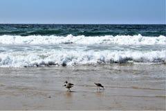 Beachfront bij Hermosa-Strand Californië in de Provincie van Los Angeles, Californië, Verenigde Staten royalty-vrije stock foto