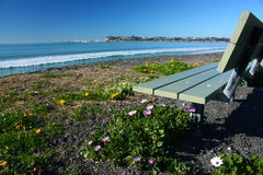 Beachfront seat in Bay View, Hawkes Bay, New Zealand Royalty Free Stock Image